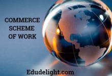 Commerce Scheme of Work